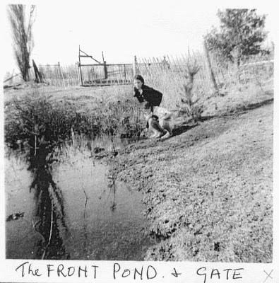 The Front Pond and Gate. adjacent to the Station Street gateway, but it is more concealed now by trees and brush than it once was.
